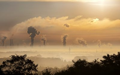 Doctors take the lead against air pollution